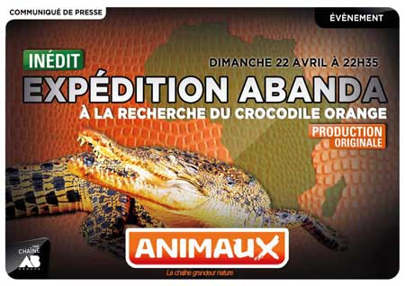 Expedition Abanda - elodie fertil - Animaux tv